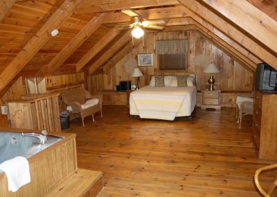 Leopard Lodge Cabin near Helen, GA